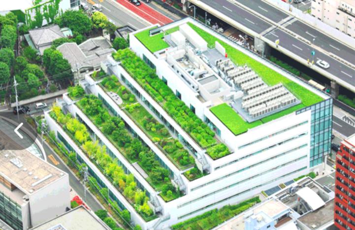 AI & Natuur in smart cities